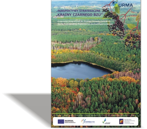 """URMA – Perspektywy strategiczne """"Krainy Czarnego Bzu"""""""